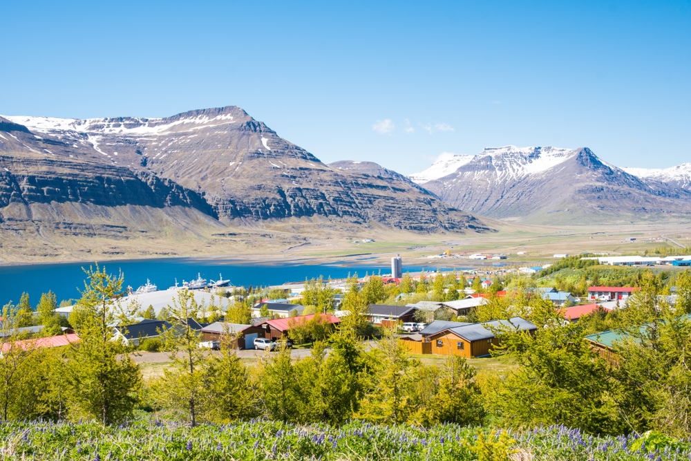 the town of Reydarfjordur where the wartime museum is located